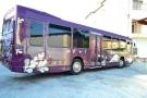 Bus per Feste a Roma