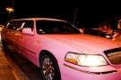 Limousine Pink Roma