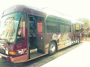 Limo Bus 30 Posti a Roma